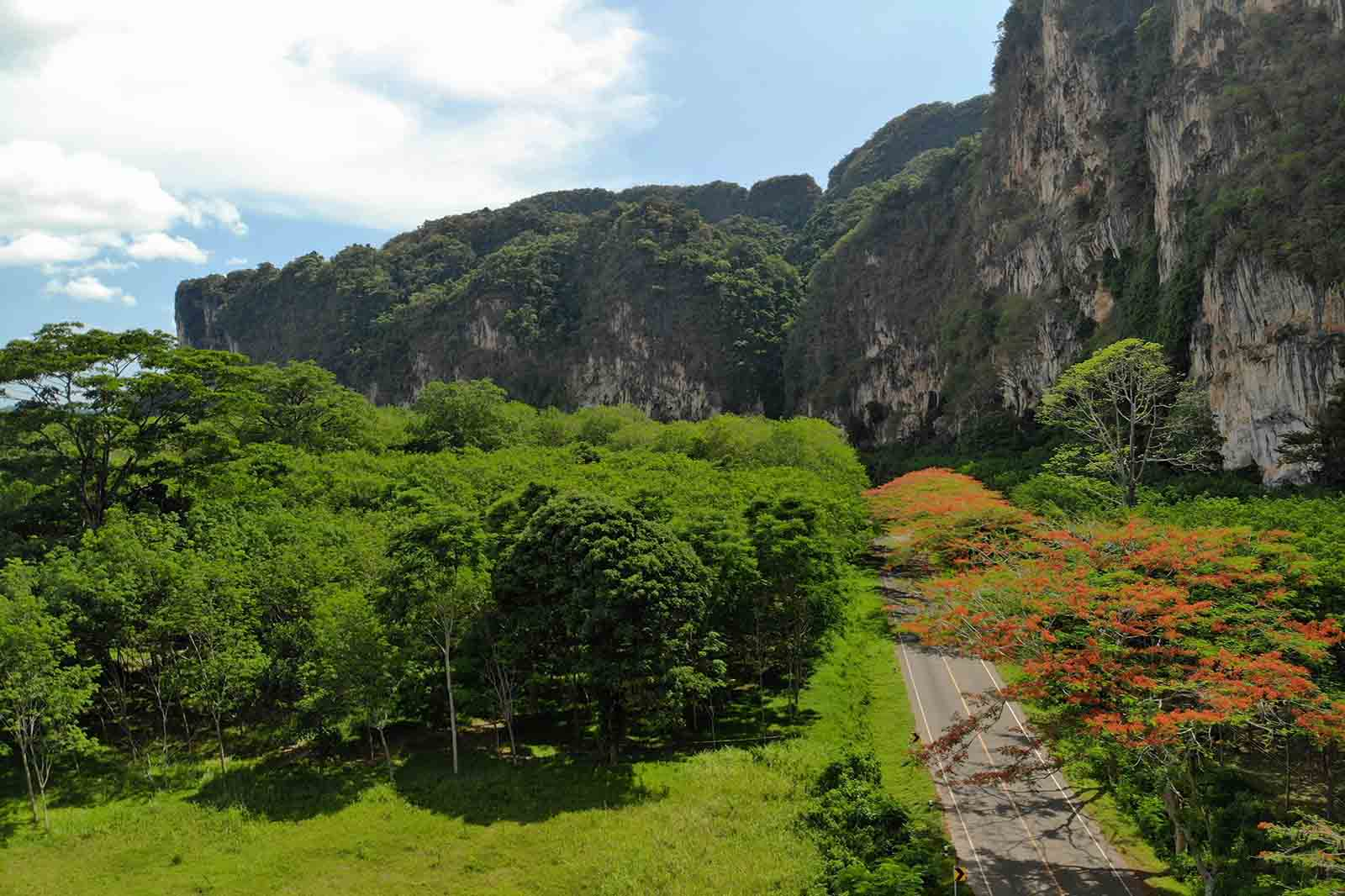for sale - Beautiful 32 Rai Land for Sale with Amazing Scenery  - Khao Thong, Krabi